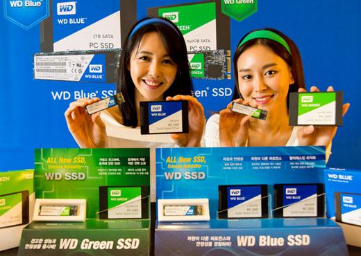 WD_SSD_01